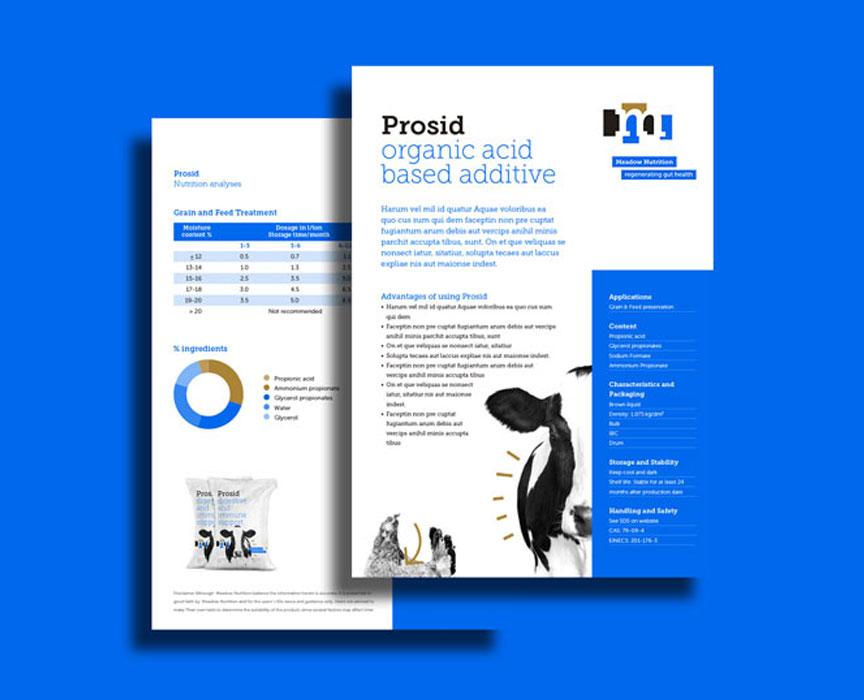 Studio-Broodnodig-huisstijl-logo-laten-maken-arnhem-meadow-nutrition-productflyer
