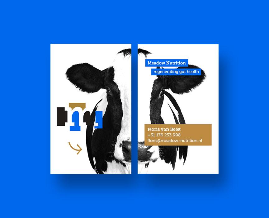 Studio-Broodnodig-huisstijl-logo-laten-maken-arnhem-meadow-nutrition-visitekaartje